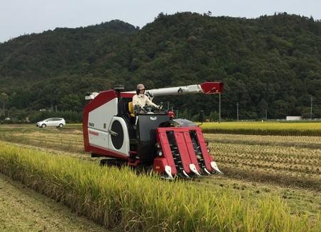 ヤンマーの営農・栽培支援を活用した酒米ソリューションの提供を開始