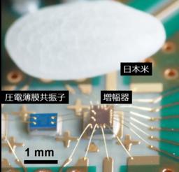 原子時計をスマートフォンに搭載できるくらいの超小型システムへ ~圧電薄膜の機械振動を利用~