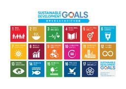 SDGsの17の目標(国連広報センターwebサイトより)