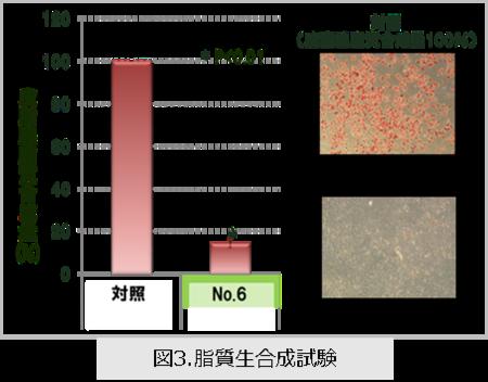 図3.脂質生合成試験